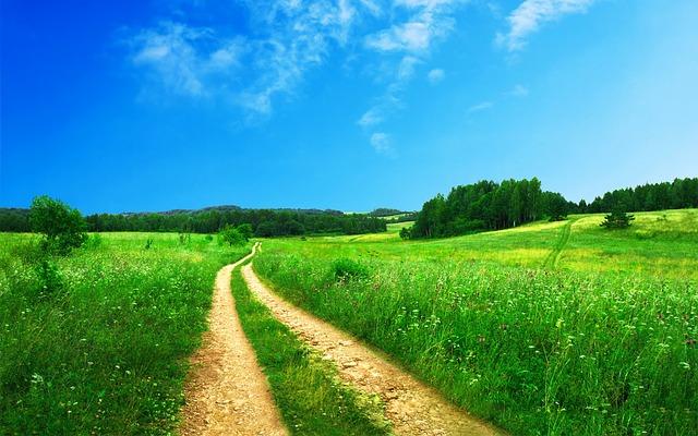 route pour devenir investisseur immobilier